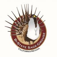 BSSG Logo